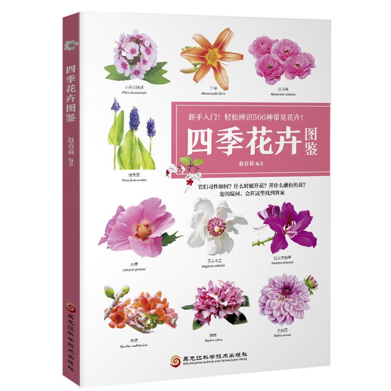 四季花卉图鉴(新手入门!轻松辨别566种常见花卉)